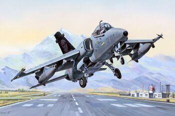 81741 1/48  Самолет AMX Ground Attack Aircraft